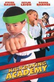 Академия кикбоксинга / Kickboxing Academy