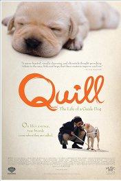 Куилл / Quill