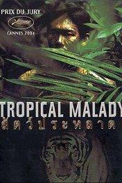 Тропическая болезнь / Sud pralat