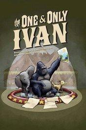 Айван, единственный и неповторимый / The One and Only Ivan