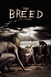 Свора / The Breed