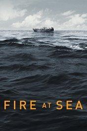 Море в огне / Fuocoammare