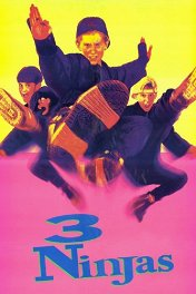 Три ниндзя / 3 Ninjas