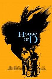 Тайны прошлого / House of D