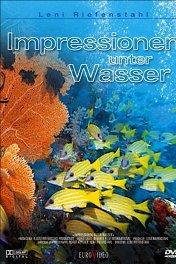 Коралловый рай / Impressionen unter Wasser