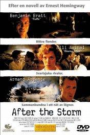 После бури / After the Storm