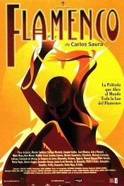 Фламенко / Flamenco