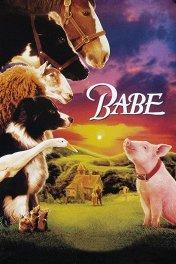 Бэйб / Babe