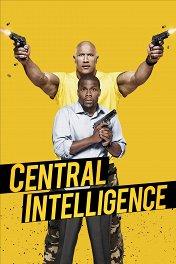 Полтора шпиона / Central Intelligence