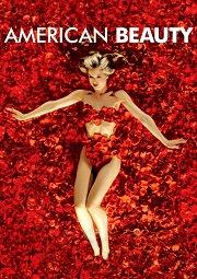 Постер Красота по-американски