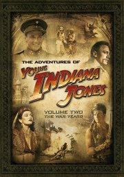 Постер Приключения молодого Индианы Джонса: Шпионские похождения