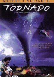 Постер Торнадо