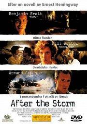 Постер После бури