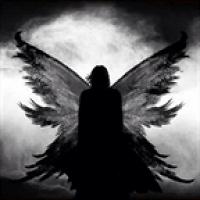 Фото Archangel