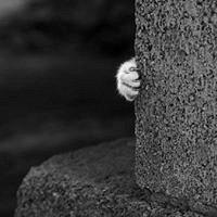 Фото Галия Агишева