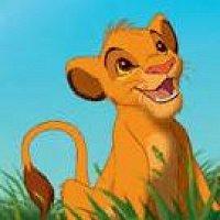 Фото Simba Lion