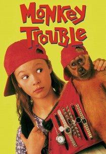 Неприятности с обезьянкой