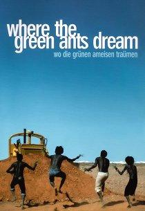 Там, где мечтают зеленые муравьи