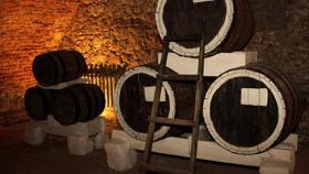 Виноградные сады Сарепты