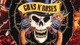 «Metallica. Bon Jovi. Guns N' Roses. Рок на струнных»: Квартет «Мелодион»