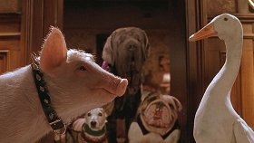 10 трогательных и увлекательных фильмов про домашних животных