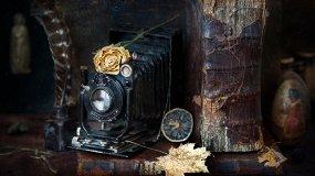 Публичка в объективе южноуральских фотографов