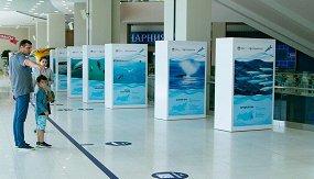 Выставка о китах и дельфинах