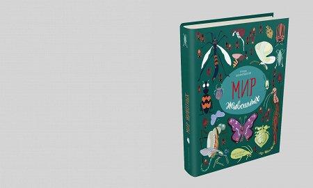 Букашка-таракашка: детские книги про насекомых