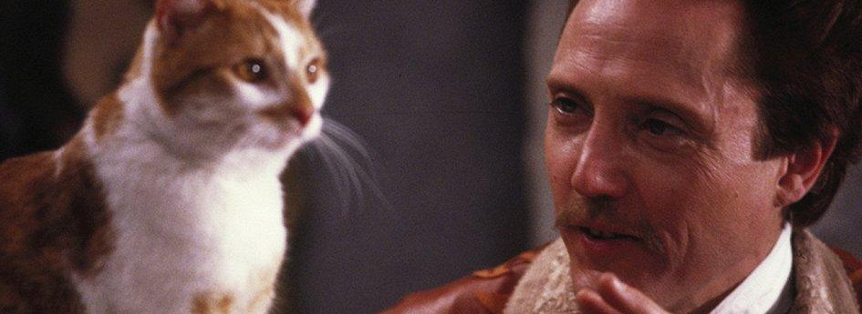 Кино: «Кот в сапогах»