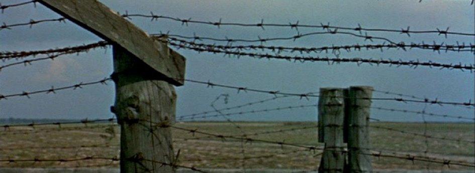 Кино: «Ночь и туман»