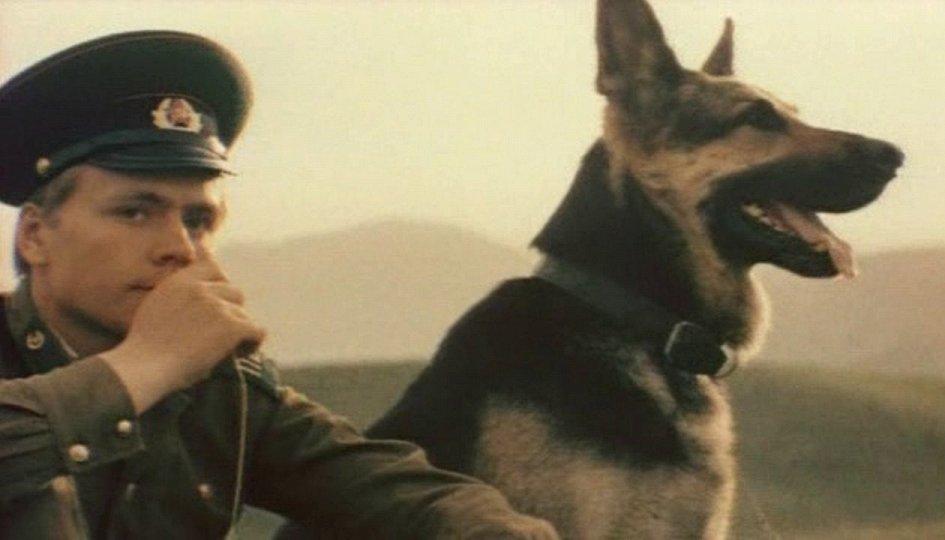 Кино: «Пограничный пес Алый»