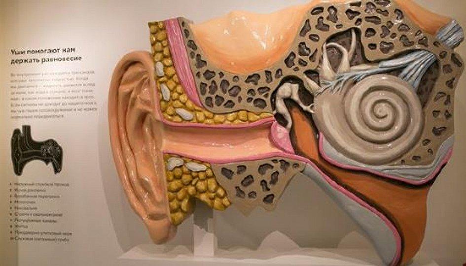 Выставки: Звук и… Вселенная, человек, игра…