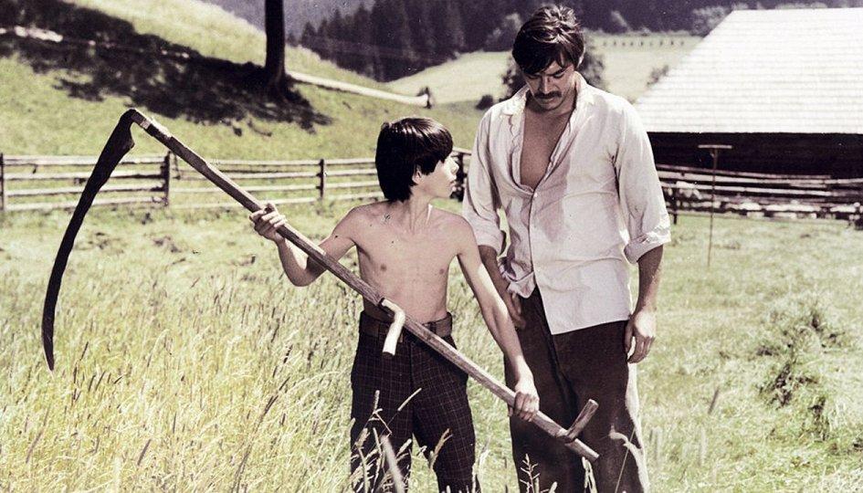 Кино: «Тени знойного лета»
