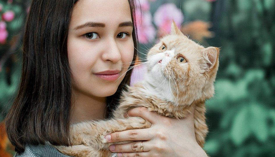 Выставки: Федерация кошек
