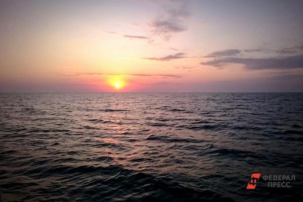 ВКрыму зафиксировали загрязнение Черного моря вЯлте иКерчи