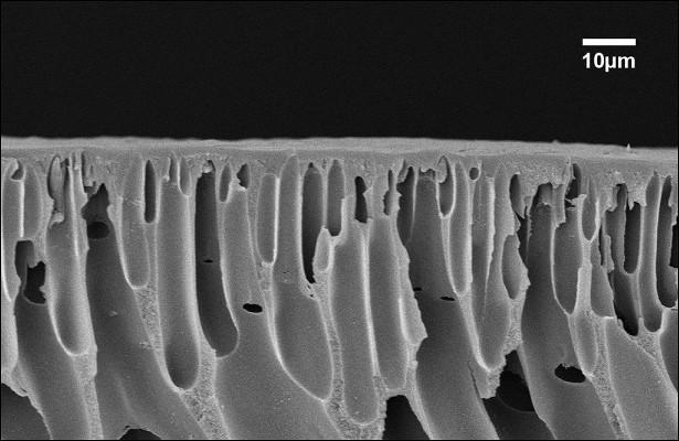 Инфракрасное излучение позволило получить ультрастойкие мембраны дляфильтрации органики