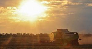 Путин поддерживает идею предоставления сельхозземель на конкурсной основе