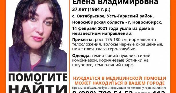 Голубоглазая брюнетка пропала безвести вНовосибирской области