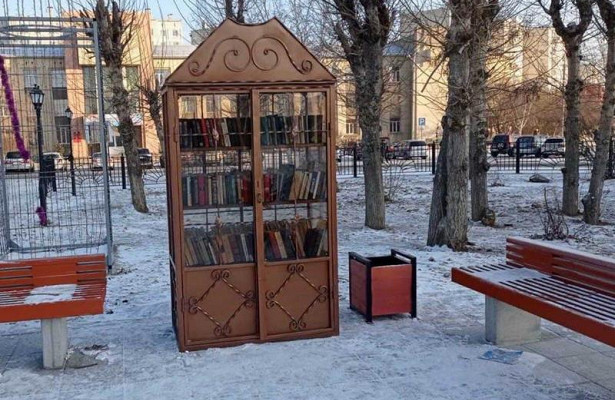 Двановых книжных шкафа сбесплатной литературой появились вЧите