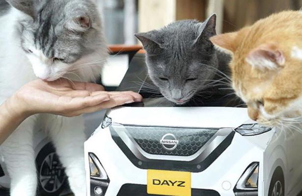 Nissan рекламирует новый автомобиль спомощью домиков длякотов
