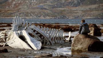 Выставка фотографий сосъемок фильма «Левиафан»