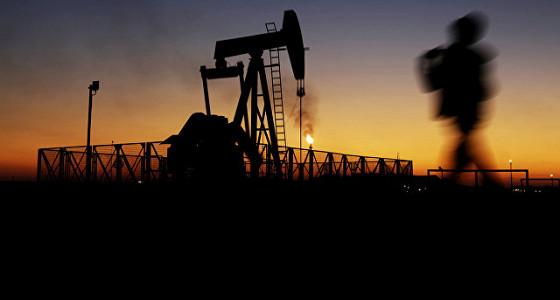Стоимость нефти слабо растет на ожидаемых данных Минэнерго США