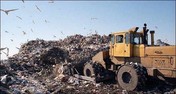 В Подмосковье закрыли 15 мусорных полигонов: что дальше?