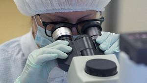 Ученые придумали способ борьбы сраком спомощью «суперсолдат»