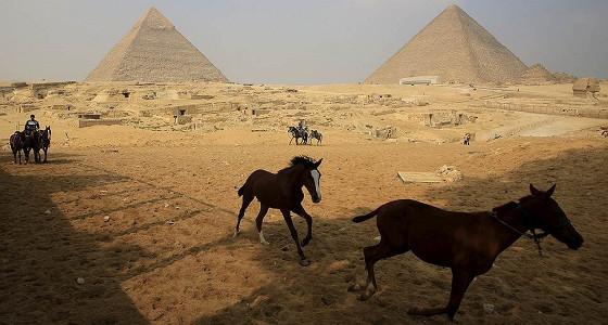 Египет впишут в текущий бюджет