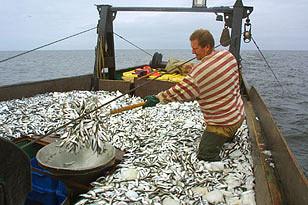 Россия отдала Норвегии Баренцево море