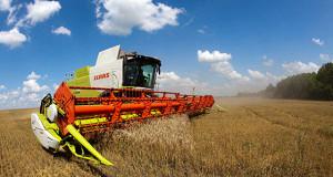 Россия на четверть увеличит производство зерна к 2030 г.
