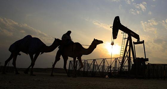 ОПЕК в мае нарастила добычу нефти до максимума 2017 года